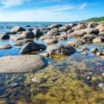 Coast of Baltic Sea. Estonia — Stock Photo #66048213
