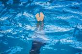 Little girl ion synchronized swimming — Stock Photo