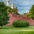 Moscow Kremlin in Russia — Stock Photo #52988055
