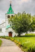 Trinity Cathedral in Alexandrovskaya village — Stock Photo
