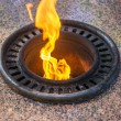 Eternal flame — Stock Photo #52993259