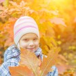 Little girl in yellow coat collects yellow maple leaves — Stock Photo #53966069