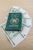 Passport of Belarus with rubles — Stock Photo