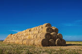 Haystack in field — Stock Photo