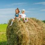 Little girl on haystack. — Stock Photo #64343075