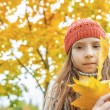 Little girl in sweater with yellow maple leaves — Stock Photo #68140769