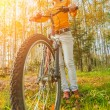 Beautiful girl riding bicycle — Stock Photo #71847781