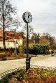 Clock in city park — Stock Photo