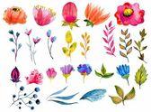 Conjunto flor hermosa acuarela — Vector de stock