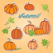 Pattern with pumpkins — Stock Vector