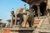 Guard of the Vishwonath Temple — Stock Photo