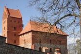 Medievale castello di trakai — Foto Stock