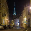 Old Tallinn in the night — Stock Photo #61039837
