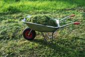 Wheelbarrow on a lawn with fresh grass — Stock Photo