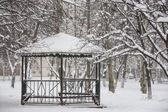 Winter park mit weißem schnee bedeckt — Stockfoto