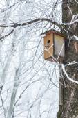 Nesting box under snow — Stock Photo