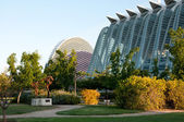 View of park opposite the City of Arts and Sciences of Valencia — Stock Photo