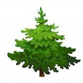 Pine tree — Stock Vector