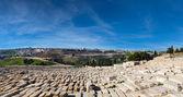 Magnificent panorama of Jerusalem. — Stock Photo