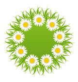 Spring freshness round card with grass and camomiles flowers — Stock Vector