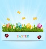 Greeting card with Easter colorful eggs and camomiles in green g — Stock Vector