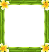 Natural Frame Made Bamboo and Frangipani Flowers, Copy Space for Your Text — Stock Vector