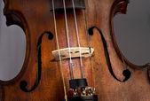 Antique Violin — Stock Photo