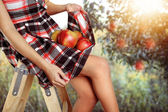 Slim girl collects the apples — Stock Photo