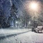 Winter wonderland evening in a park — Stock Photo #63444611