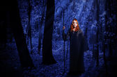 Witch in the moonlight forest — Stock Photo