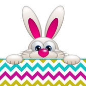 Easter cartoon bunny with place for text — Stock Photo