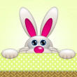 Cartoon easter bunny in basket looking up — Stock Photo #66910995