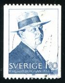 Hjalmar Bergman — Stock Photo