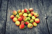 Bunch of red wild strawberry — Stock Photo