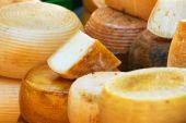 Verschillende soorten Italiaanse kaas — Stockfoto