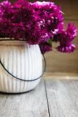Autumnal flowers — Stock Photo
