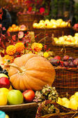Autumn flowers and fruits — Stock Photo