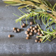 A bunch of fresh rosemary — Stock Photo #63705643