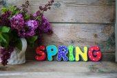 Tempo de primavera — Fotografia Stock