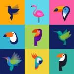 Tropical birds - set of vector icons — Stock Vector #68027655
