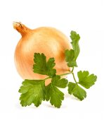 Onion and parsley leaves isolated on white background — Stock Photo