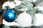 Two christmas balls on a twig. — Foto de Stock