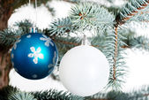 Two christmas balls on a twig. — Stok fotoğraf