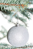 One separated christmas ball handing on a twig. — Zdjęcie stockowe