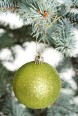 One separated christmas ball handing on a twig. — 图库照片