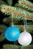 Two christmas balls hanging on a tree. — Stock fotografie