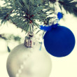 Two christmas balls on a twig. — Stock Photo #58544821