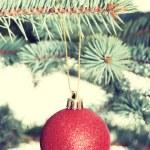 Christmas ball handing on a twig — Stock Photo #58545227