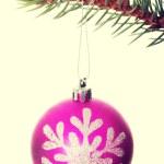 Christmas ball handing on a twig — Stock Photo #58548389