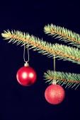 Two christmas balls hanging on a tree. — Stock Photo